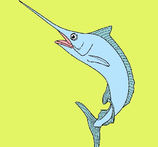 Dibujo de pez espada pintado por josefino en for Curiosidades del pez espada