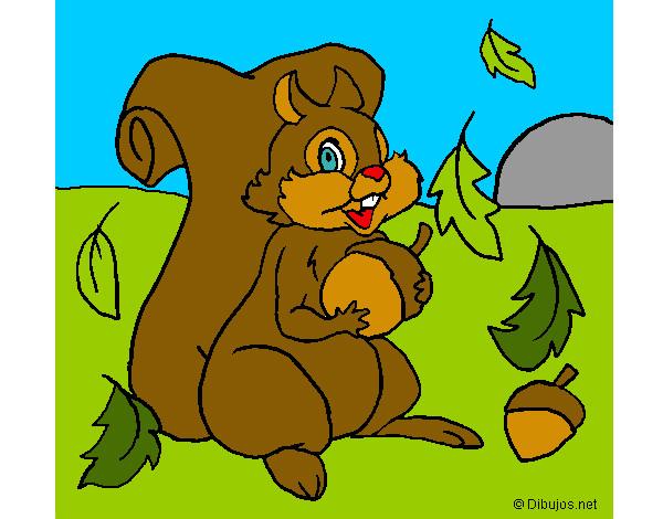 Dibujo de la ardilla pintado por Calablanca en Dibujosnet el da