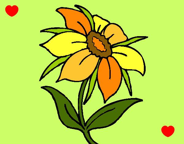 Worksheet. Dibujo de sencilla pintado por Milgen en Dibujosnet el da 0903