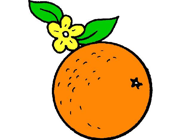 Dibujo de naranja de Danilo pintado por Daniloivan en Dibujosnet