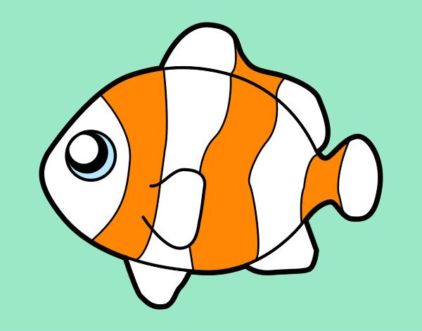 Dibujo de pez payaso pintado por Charito en Dibujosnet el da 05