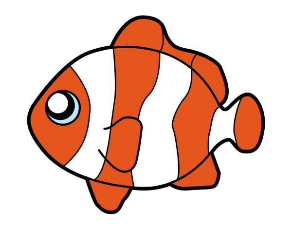 Dibujo de Nemo. pintado por Bluepurple en Dibujos.net el día 12-03 ...