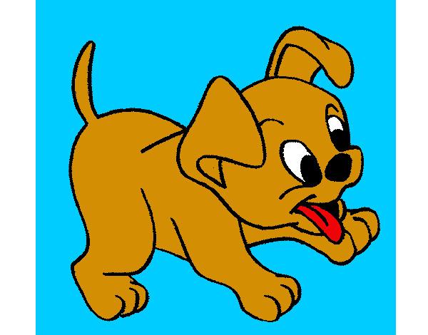 Dibujo de el perrito mas bonito pintado por Diego76 en Dibujosnet