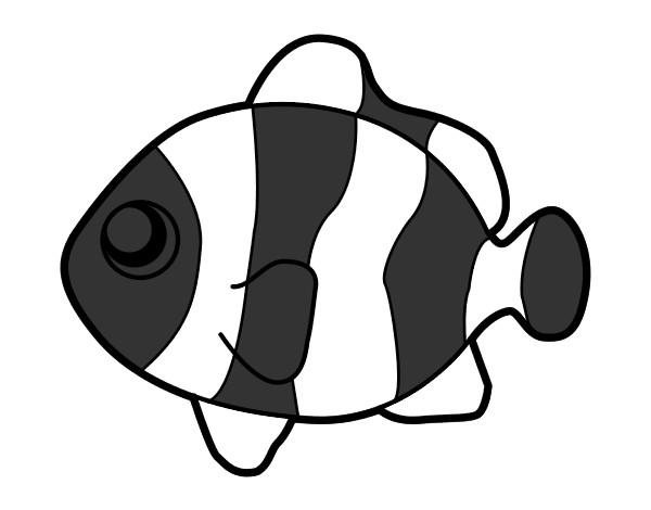Dibujo de ni pez payaso pintado por Canpanilla en Dibujosnet el