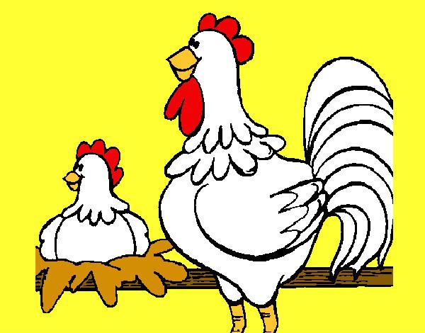 Dibujo de Gallo y gallina pintado por Lamorales en Dibujos.net el ...