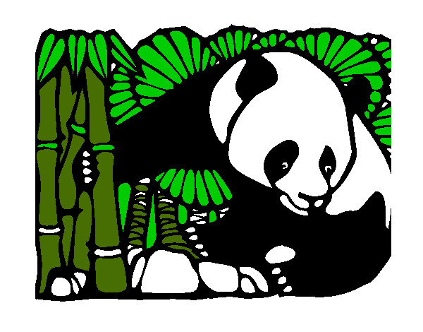 Dibujo de oso panda come bamboo pintado por Valecita6 en