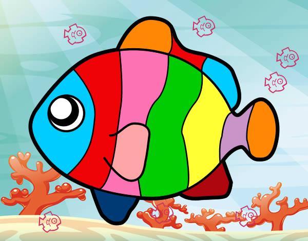 Dibujo de pez payaso pintado por Leyla123 en Dibujosnet el da 02