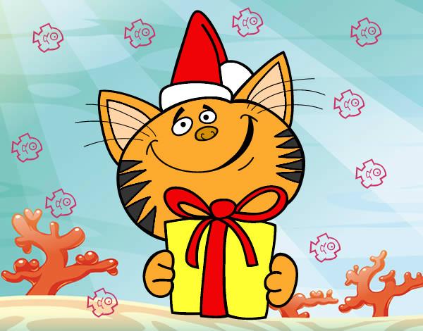 Gato con regalo
