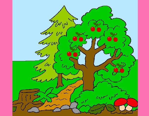 http://cdn5.dibujos.net/dibujos/pintados/201216/bosque-1-naturaleza-el-bosque-pintado-por-ashhhh-9734213.jpg