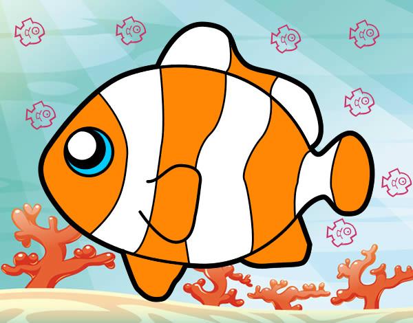 Dibujo de Nemo pintado por Bugsbunny0 en Dibujosnet el da 2504