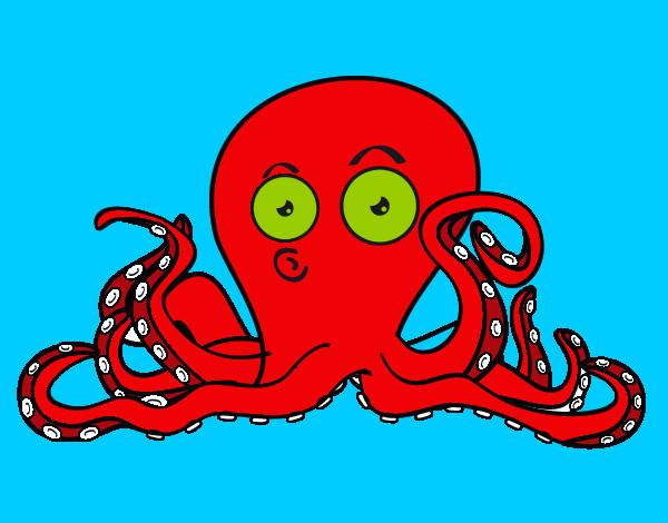 Dibujo De Cefalópodo Pintado Por Isco En Dibujosnet El Día 30 04 12