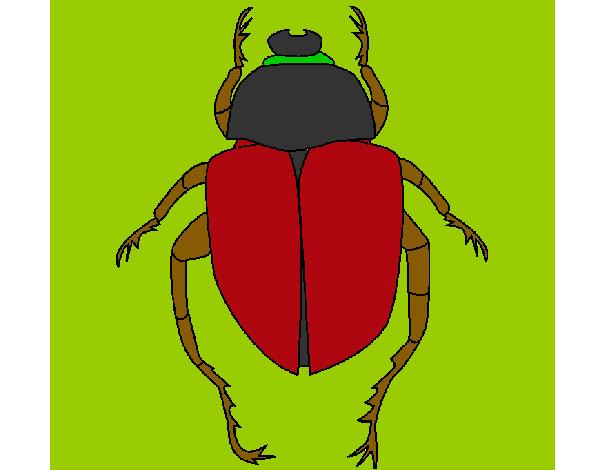 Dibujo De Escarabajo Jesus Pintado Por Patrocini En Dibujos