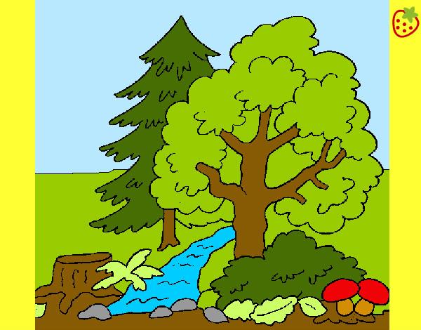 Dibujo de Bosque  ro pintado por Mmmakylu en Dibujosnet el da