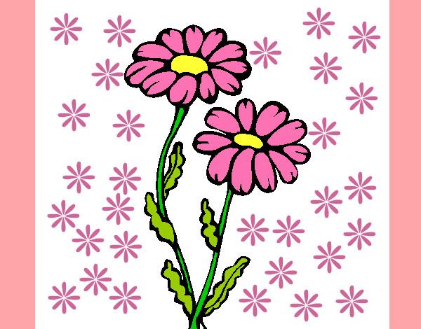 Dibujo de Flores fucsias pintado por Aylentega en Dibujosnet el