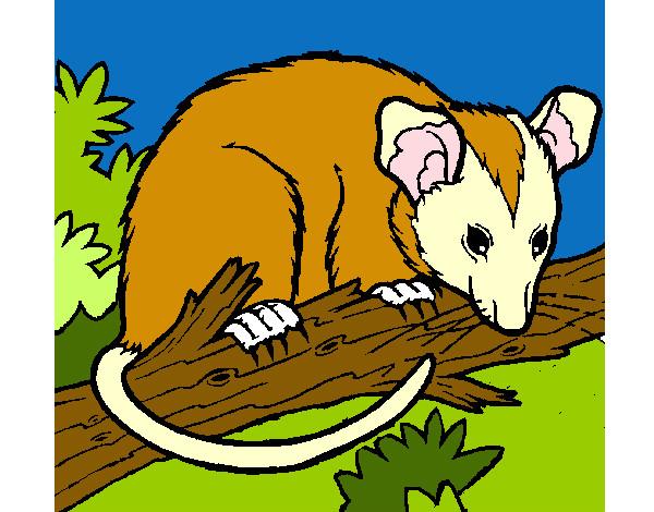 Dibujo De Rata Pintado Por Jeji En Dibujos.net El Día 21