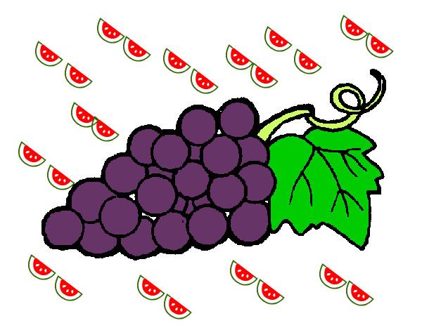 Dibujo de la uva curuva pintado por Sebastiann en Dibujosnet el