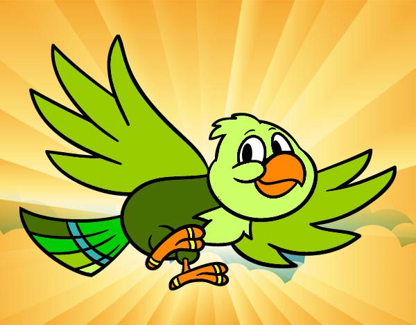 Dibujo De Perico Verde Pintado Por Mariana233 En Dibujos