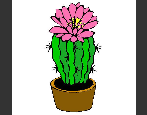 Dibujo De Cactus Con Flor Pintado Por Mayraa En Dibujos