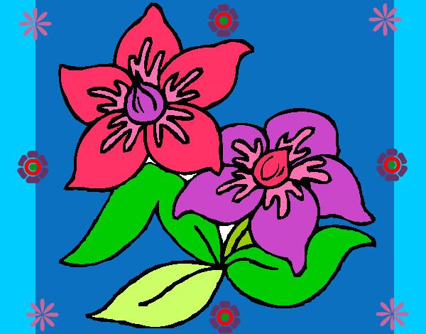 Dibujo de flores primaverales pintado por Catita1014 en Dibujos