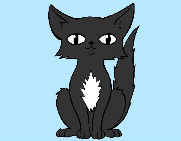 Dibujo de gato persa pintado por lokusman en - Dibujos de gatos pintados ...