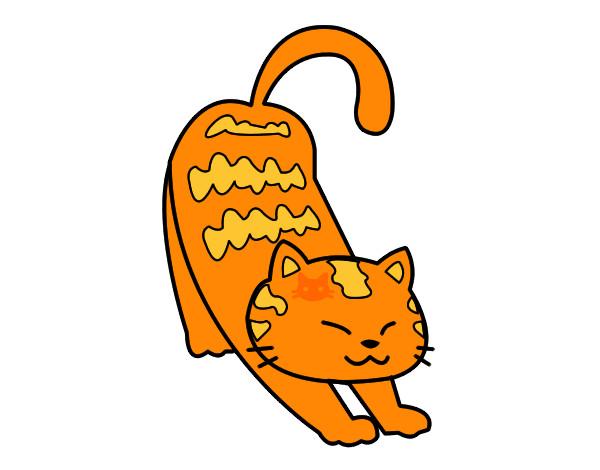 Pin gatos dibujos pintados on pinterest - Dibujos de gatos pintados ...