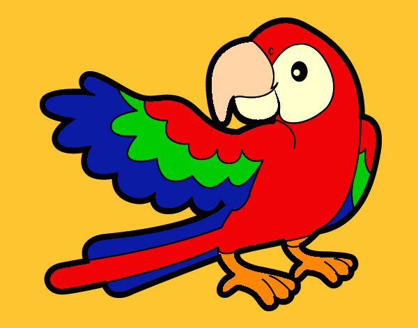 Dibujo de guacamaya roja pintado por Dingodail en Dibujos.net el ...