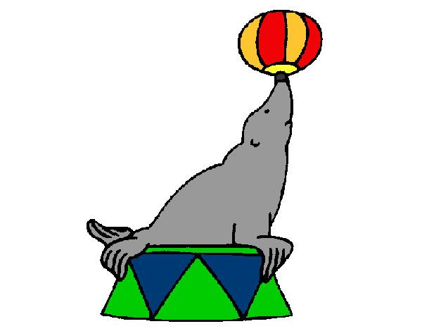 Dibujo de foca circo 2 pintado por Belug en Dibujosnet el da 23