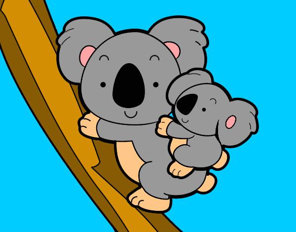 Dibujo de Madre koala pintado por Burgerking en Dibujosnet el da