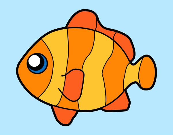 Dibujo de pez payaso pintado por Esantalo en Dibujosnet el da 03