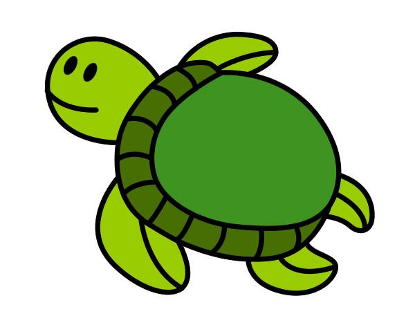 Dibujo de tortuga pintado por Esantalo en Dibujos.net el día 03-08 ...