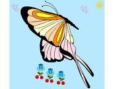201233/mariposa-con-grandes-alas-animales-insectos-pintado-por-alhy8-9762820_163.jpg