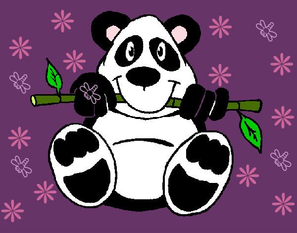 dibujo de osita panda pintado por naaray1 en dibujos   el d a 18 08