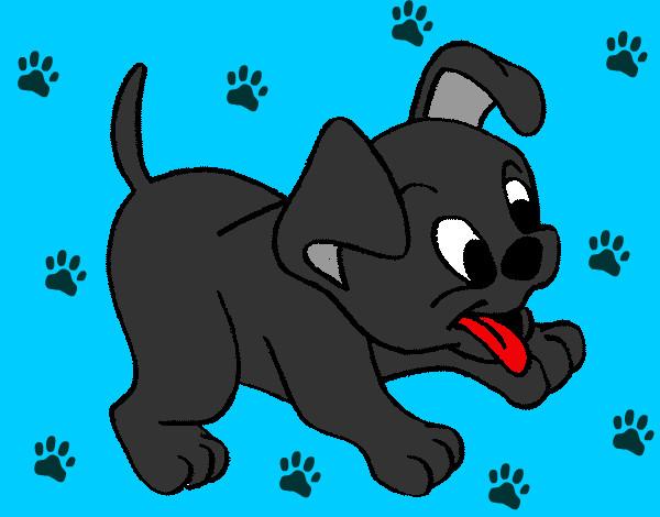 Dibujo de Perrito Tierno pintado por Andd en Dibujosnet el da 14