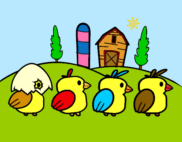 Gallos Coloridos Dibujos Animados: Dibujo De Pollitos Coloridos Pintado Por Zairuki207 En