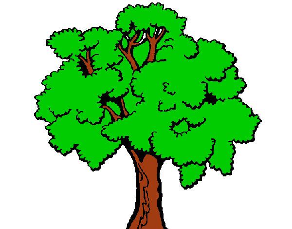 Dibujos De Arboles Coloreados: Dibujo De Árbol 1 Pintado Por Vale24 En Dibujos.net El Día