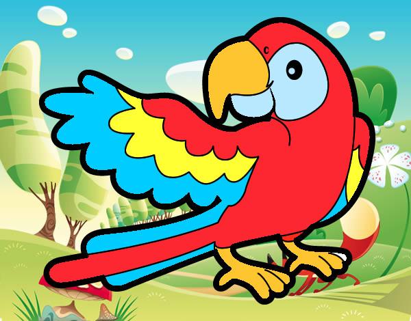 Dibujo de Loro de colores pintado por Risitapop en Dibujosnet el