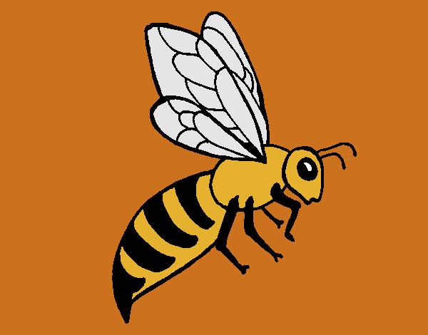Dibujo de abeja pintado por Jfrkffkkf en Dibujosnet el da 0809