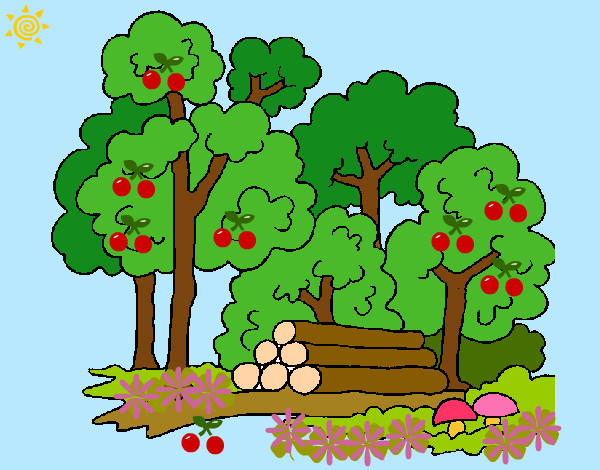 Dibujo de bosque de las mil y una fantasia pintado por Brisgeidy