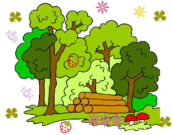 Dibujo de Bosque 2 pintado por Julietk en Dibujosnet el da 0609