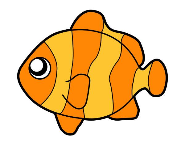Dibujo de pez payaso pintado por P1a2 en Dibujosnet el da 2310