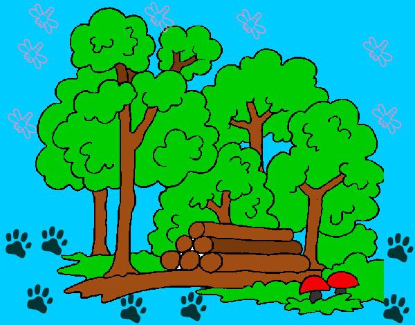 Dibujo de bosquesito pintado por Daphnesita en Dibujosnet el da