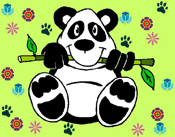 Dibujo de Oso panda pintado por Milena11 en Dibujos.net el día 03 ...