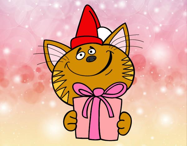 el gato que tiene regalo
