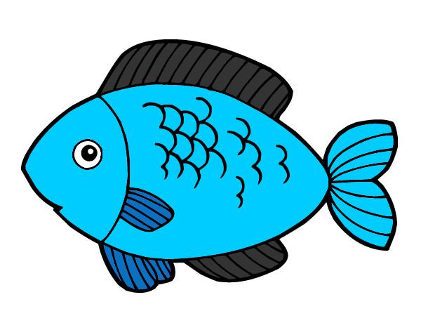 comer pescado con: