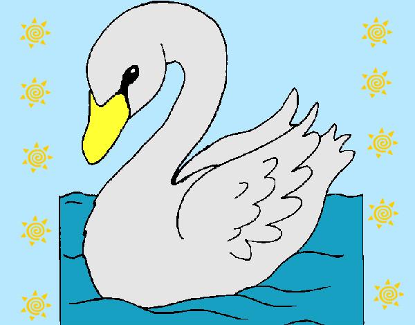 Dibujo de cisne pintado por Karlanet en Dibujosnet el da 2212