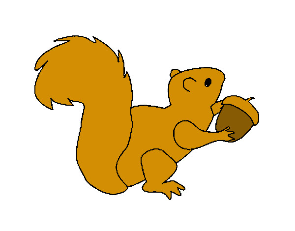Dibujo de ardilla comun pintado por Agus26 en Dibujosnet el da