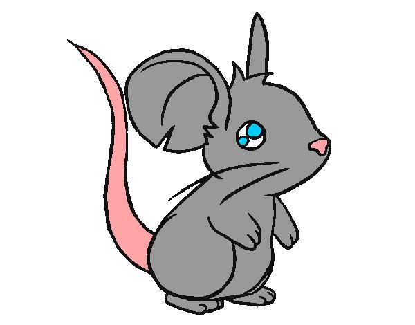 Dibujo De Ratita Pintado Por Kritzel En Dibujos.net El