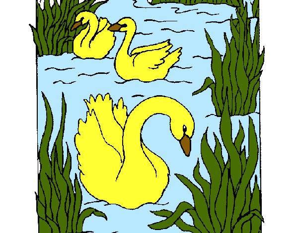 Dibujo de Naturaleza pintado por Yanibel en Dibujosnet el da 16