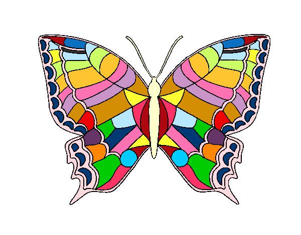 Dibujos De Mariposas Infantiles A Color: Dibujo De Mi Mariposa Pintado Por Candi22 En Dibujos.net