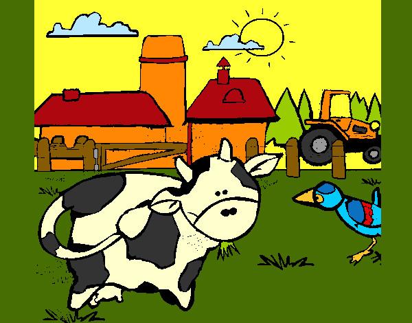 Vaca y pollito online dating 8